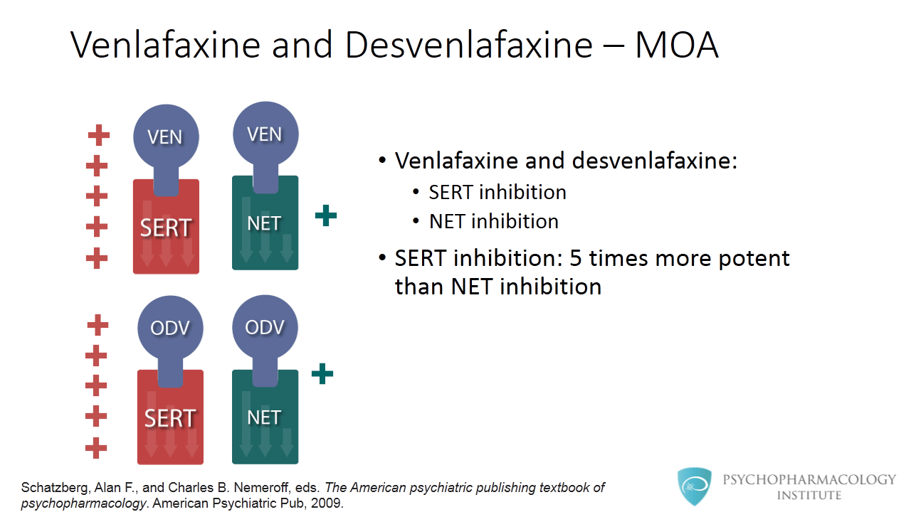 Venlafaxine And Desvenlafaxine Differences Similarities